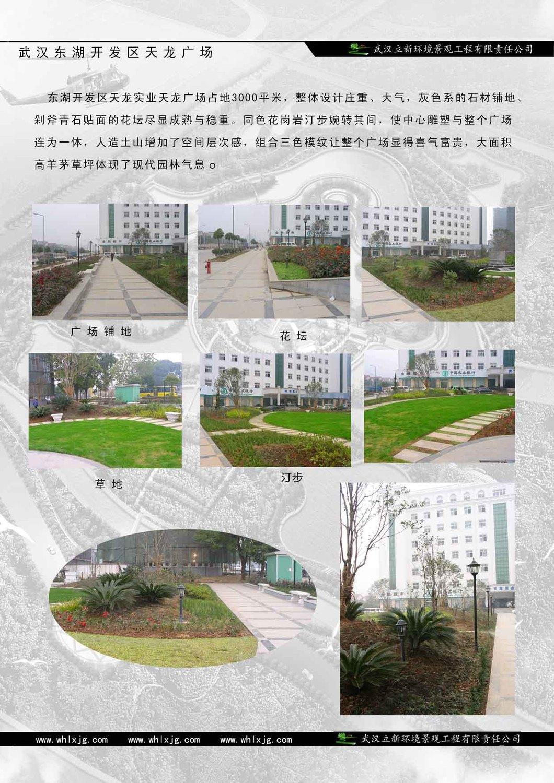 8武汉东湖开发区天龙广场.jpg